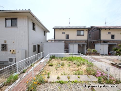 ♢ブライト ガーデン新井 C11